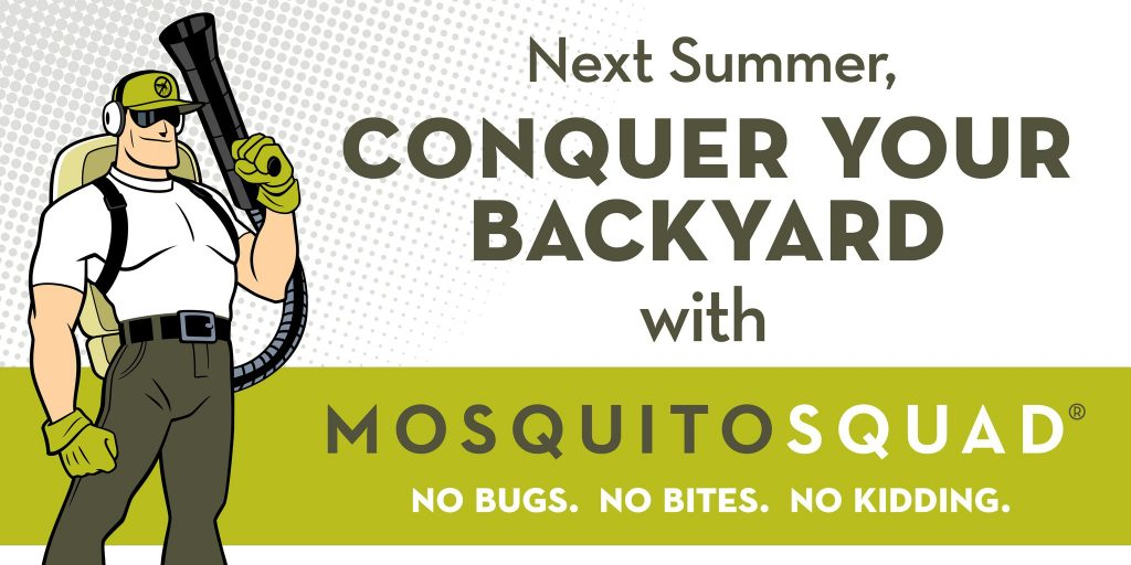 Next_Summer_Use_DC_Mosquito_Squad