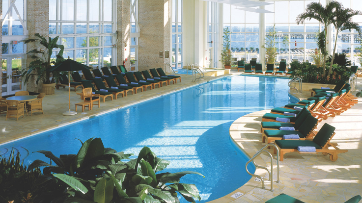 Grand Hyatt Chesapeake Swimming Pool Clarendon Moms