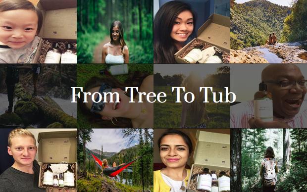 Tree to Tub - Soapberry