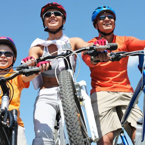 Top 9 Bike Shops in Arlington