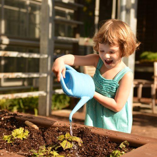 Children's Garden Open at U.S. Botanic Garden