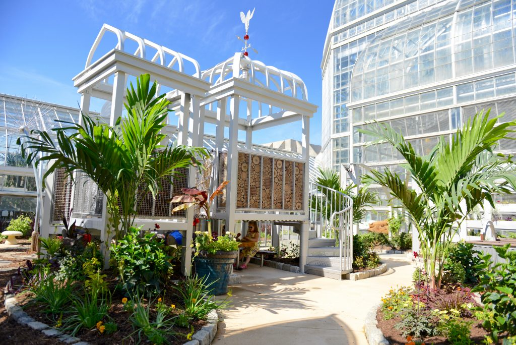 Children's Garden Open at US Botanic Garden